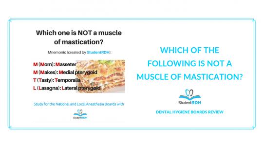 muscles of mastication, dental hygiene exam prep