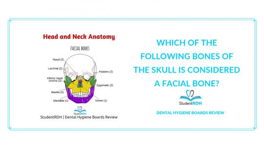 head and neck anatomy, facial bones, dental hygiene exam prep