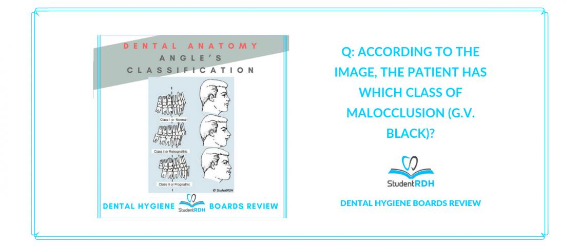dental anatomy, angle's classification, g.v. black, occlusion, dental hygiene exam prep