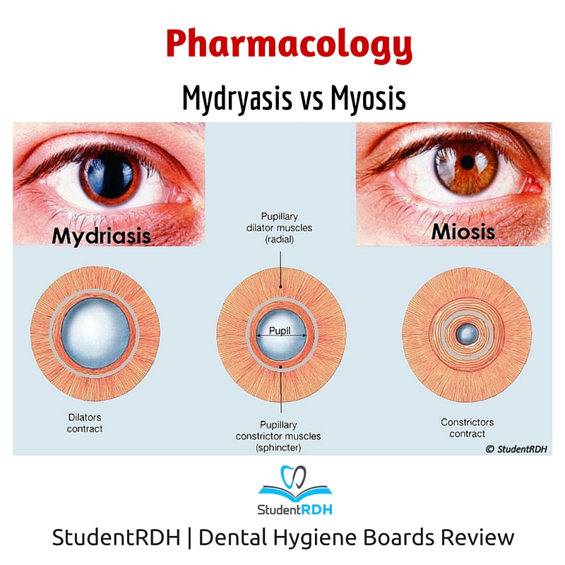 Q: The following drugs cause pupil dilation EXCEPT ...Dilated Pupils Drugs Miosis